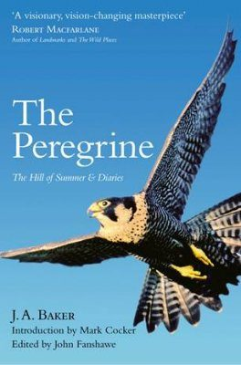 The Peregrine, The Hill of Summer & Diaries