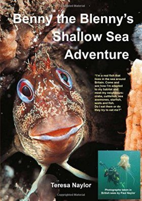 Benny the Blenny's Shallow Sea Adventure