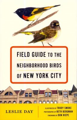 Field Guide to the Neighborhood Birds of New York City