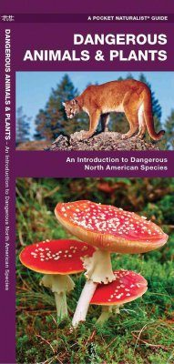 Dangerous Animals & Plants