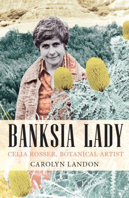 Banksia Lady