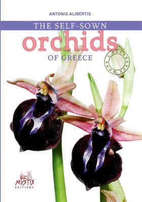 The Self-Sown Orchids of Greece