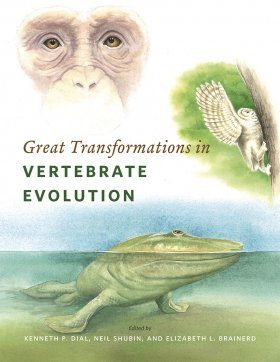 Great Transformations in Vertebrate Evolution