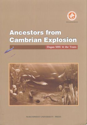 Ancestors from Cambrian Explosion