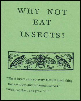 Why Not Eat Insects?