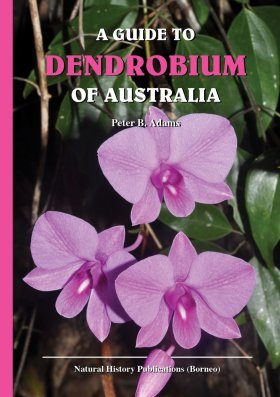 A Guide to Dendrobium of Australia