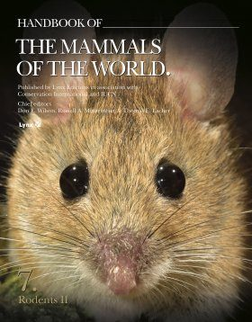 Handbook of the Mammals of the World, Volume 7: Rodents II