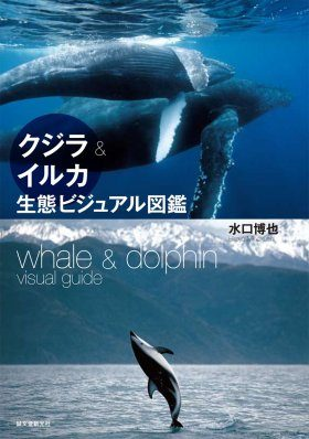 Whale & Dolphin Visual Guide [Japanese]