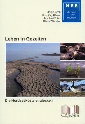 Leben in Gezeiten: Die Nordseeküste Entdecken [Life amongst the Tides: Discovering the North Sea Coast]