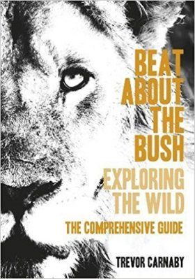 Beat About the Bush: The Comprehensive Guide