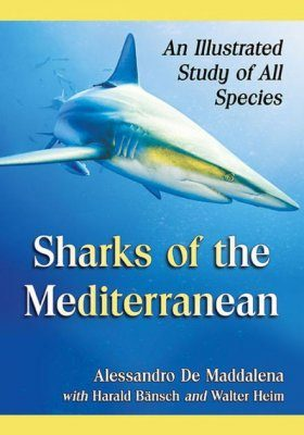 Sharks of the Mediterranean