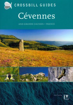 Crossbill Guide: Cévennes and Grand Causses, France