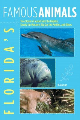Florida's Famous Animals