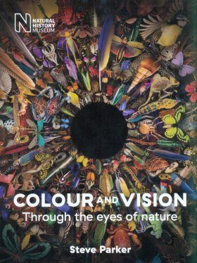 Colour and Vision