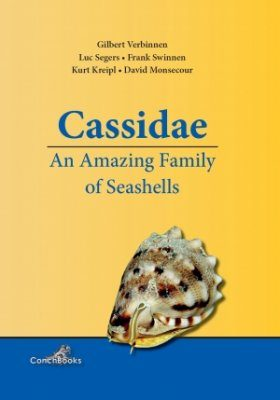 Cassidae: An Amazing Family of Seashells