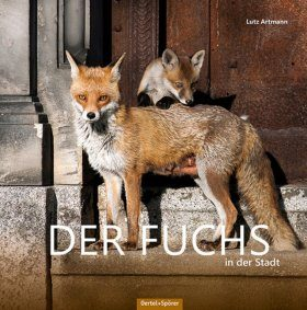 Der Fuchs in der Stadt [The Fox in the City]