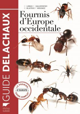 Fourmis d'Europe Occidentale [Ants of Western Europe]