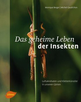 Das Geheime Leben der Insekten: Luftakrobaten und Kletterkünstler in Unseren Gärten [The Secret Life of Insects: Aerial Acrobats and Climbing Artists in Our Gardens]