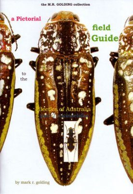 A Pictorial Field Guide to the Beetles of Australia: Part 2, Cicindelidae