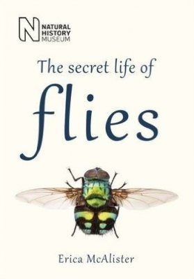 The Secret Life of Flies