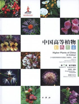 Higher Plants of China in Colour, Volume 7: Angiosperms: Scrophulariaceae – Compositae [English / Chinese]