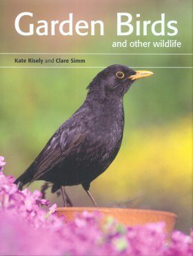 Garden Birds and Other Wildlife