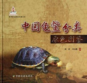 Taxonomy of Chinese Chelonians [Chinese]