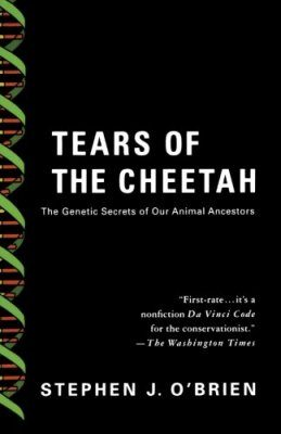 Tears of the Cheetah