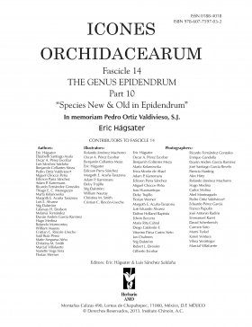 Icones Orchidacearum, Fascicle 14
