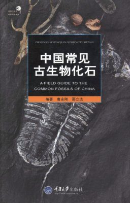 A Field Guide to the Common Fossils of China [Chinese]
