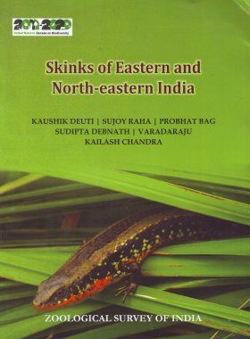 Skinks of Eastern and North-Eastern India