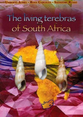 The Living Terebras of South Africa