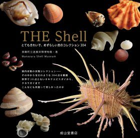 The Shell [Japanese]
