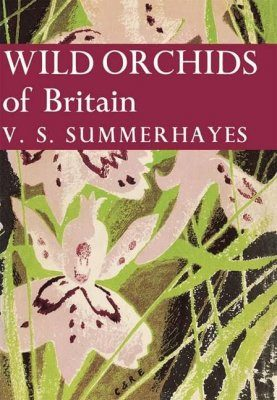 Wild Orchids of Britain