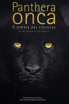 Panthera onca: In the Shadow of the Forests / À Sombra das Florestas
