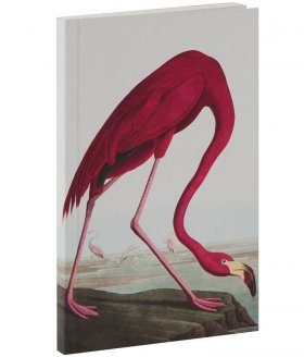 Flamingo Notebook John James Audubon S Birds Of America