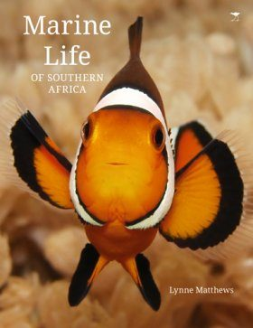 Marine Life of Southern Africa