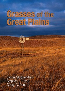 Grasses of the Great Plains
