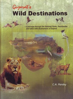 Gujarat's Wild Destinations