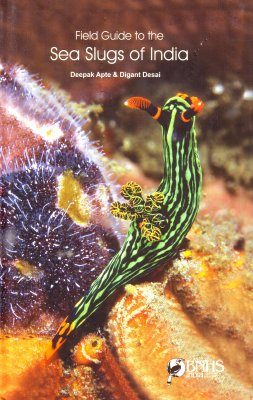 Field Guide to the Sea Slugs of India