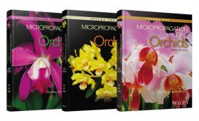 Micropropagation of Orchids (3-Volume Set)
