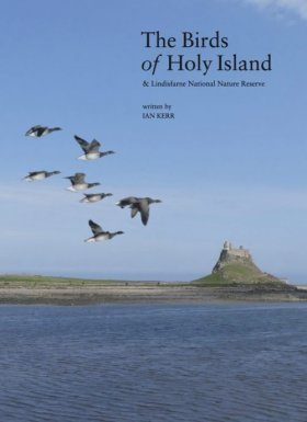 The Birds of Holy Island & Lindisfarne National Nature Reserve