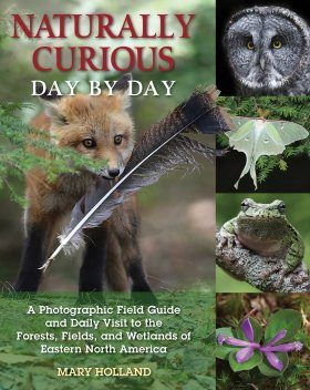 Naturally Curious Day by Day