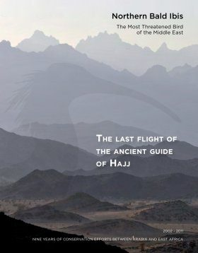 The Last Flight of the Ancient Guide of Hajj
