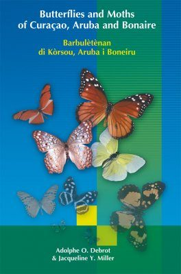 Butterflies and Moths of Curaçao, Aruba and Bonaire / Barbulètènan di Kòrsou, Aruba i Boneiru