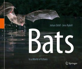 Bats: In a World of Echoes