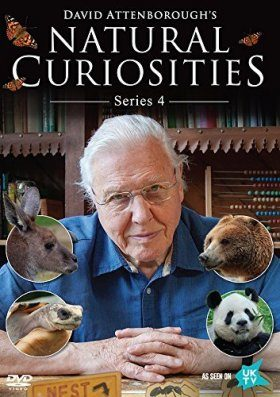 David Attenborough's Natural Curiosities Series 4 (Region 2)