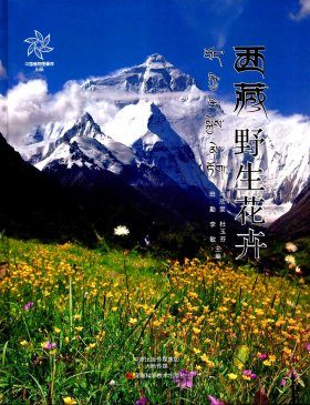 The Wild Flowers of Tibet [Chinese]