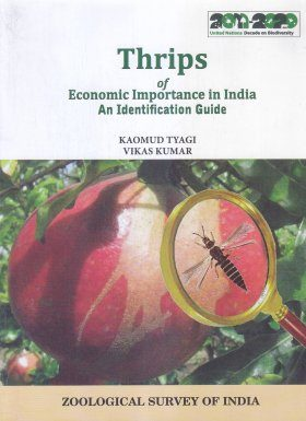 Thrips of Economic Importance in India