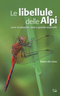 Le Libellule delle Alpi: Come Riconoscerle, Dove e Quando Osservarle [The Dragonflies of the Alps: How to Recognize Them, Where and When to Observe Them]